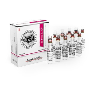Buy Testosterone enanthate at UK Online Store | Magnum Test-E 300 Online
