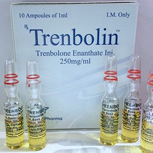 Buy Trenbolone enanthate at UK Online Store | Trenbolin (ampoules) Online